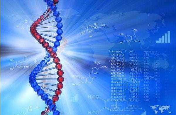 PGS基因筛查技术