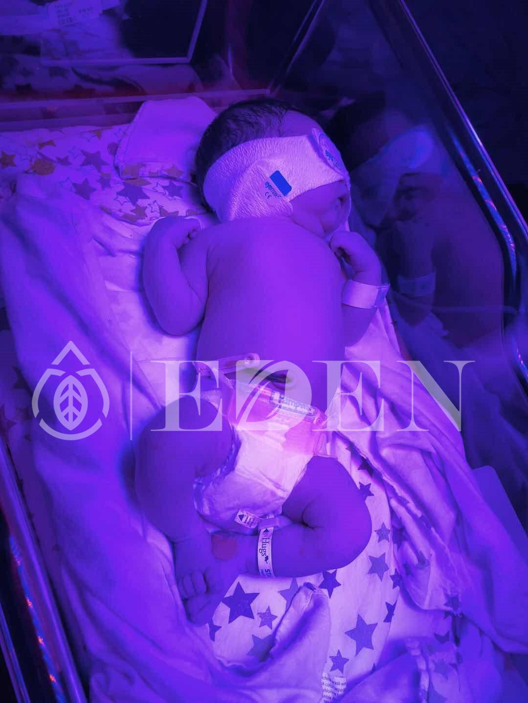 美国试管婴儿成功案例
