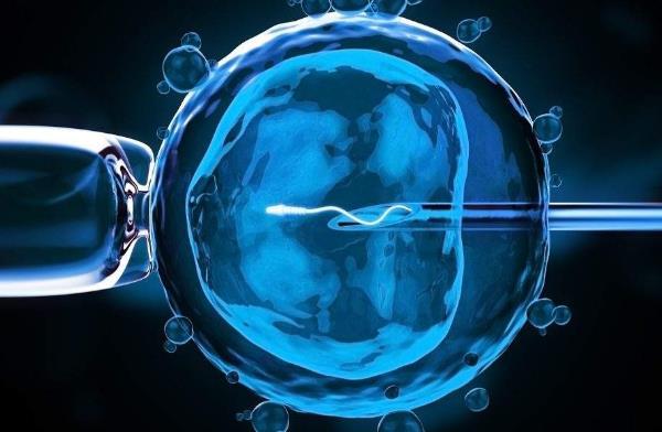 单精子注射技术