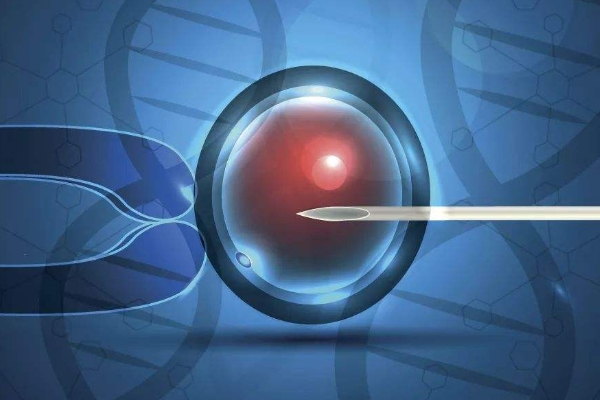 单精子注射 基因.jpg