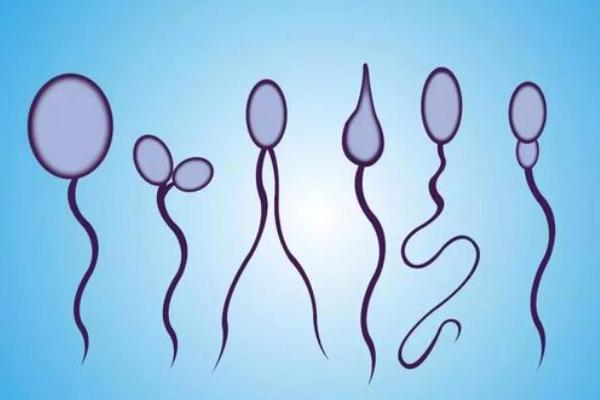 精子畸形去美国做试管,可以顺利完成IVF周期吗?