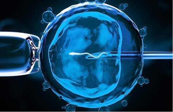 女性无排卵的原因汇总,赴美做试管婴儿能成功吗?