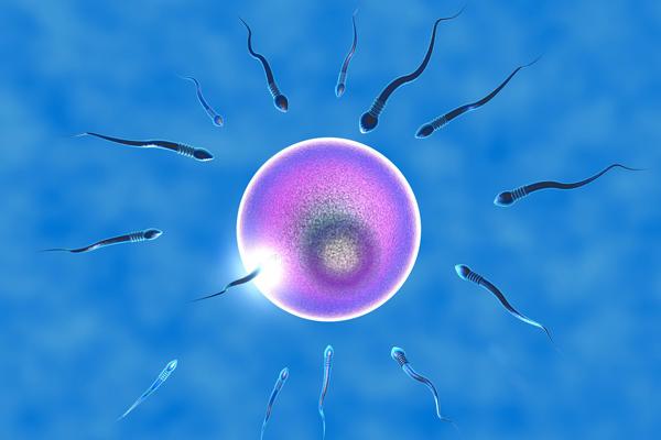 美国第二代试管婴儿对精液有哪些要求?
