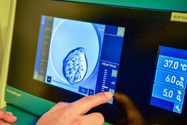 赴美做试管婴儿如何获得健康囊胚?专家:关键在这三步